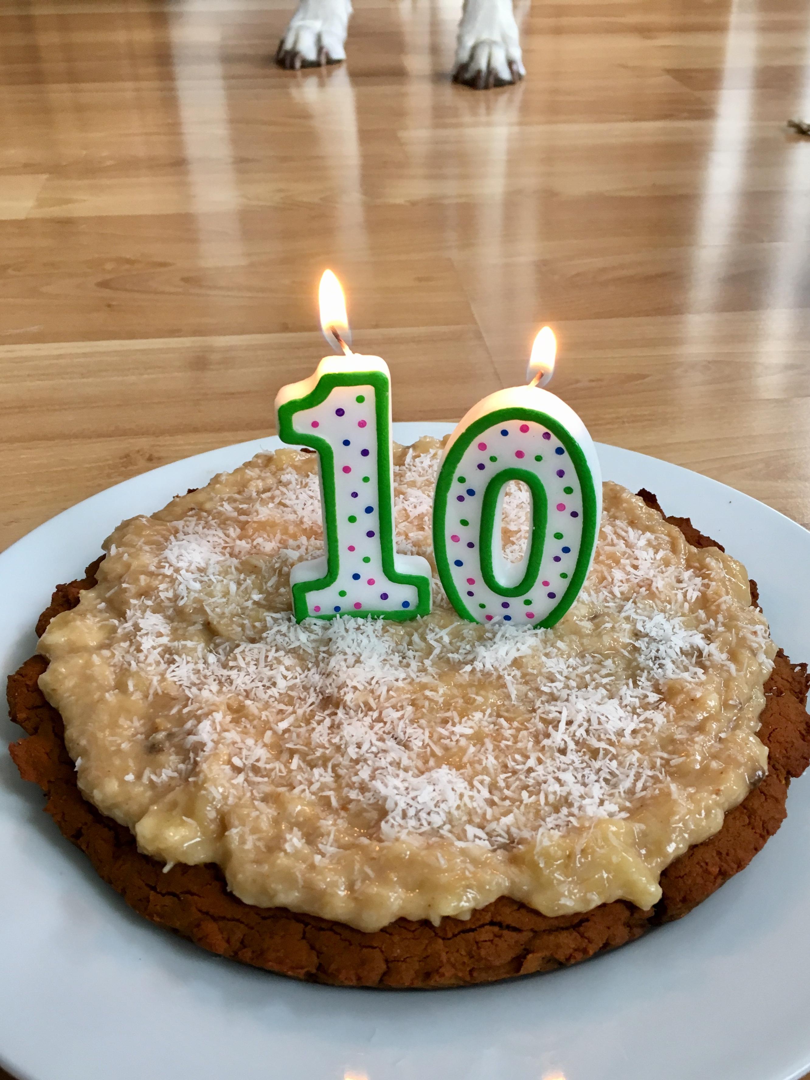 Dog Birthday Cake (gf) – The Sisters Kitchen